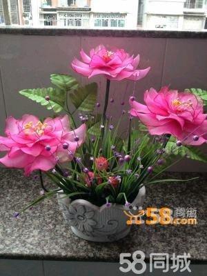 盆景牡丹花—58商家店铺
