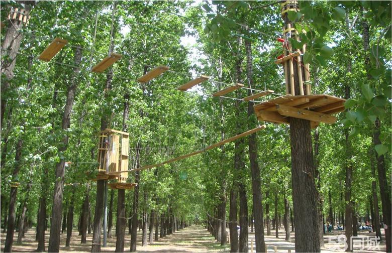快乐猩猩树上穿越主题公园朝阳公园店